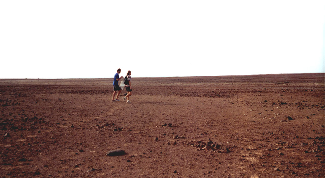 Sal landscape
