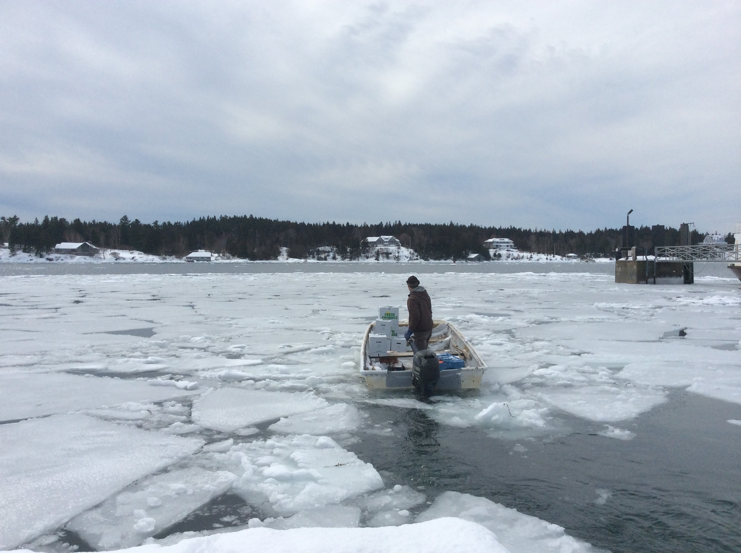 Winter Maine Islands Vinalhaven North Haven