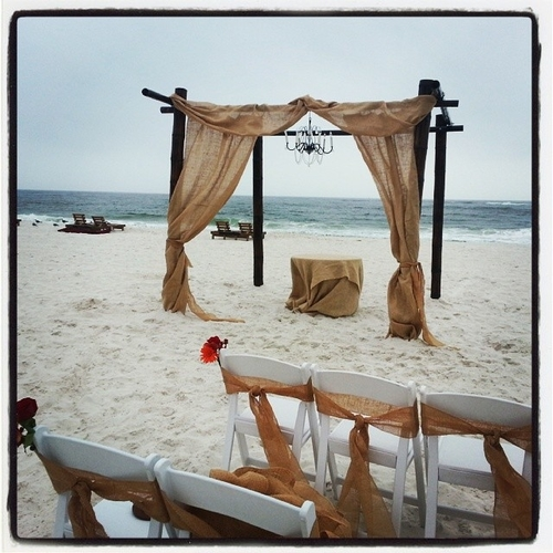Dark bamboo wedding arch rental orange beach al