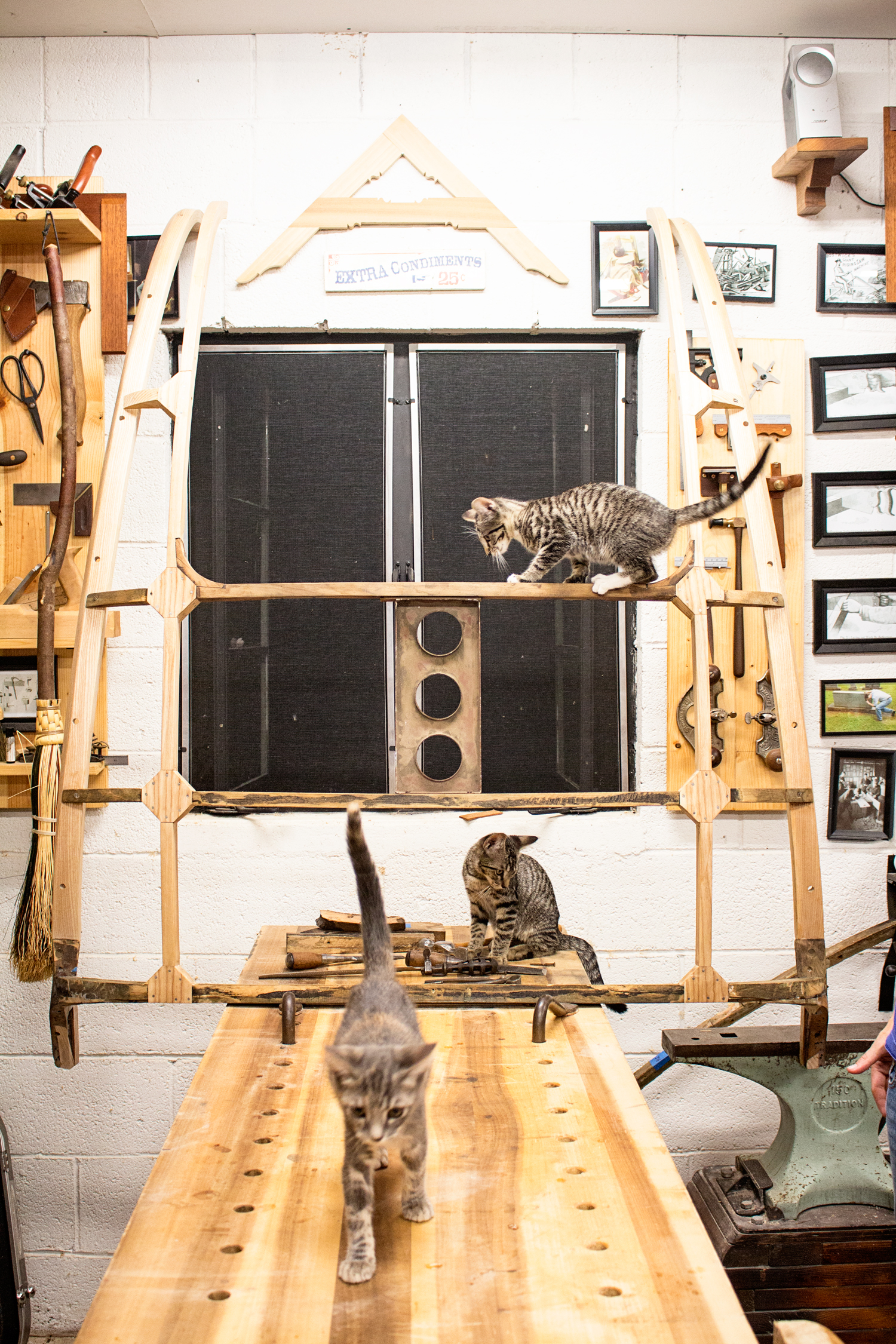 When I told the kittens that I was finishing up work on an old Jaguar, they insisted on checking it out. Pretty sure it wasn't what they were expecting!