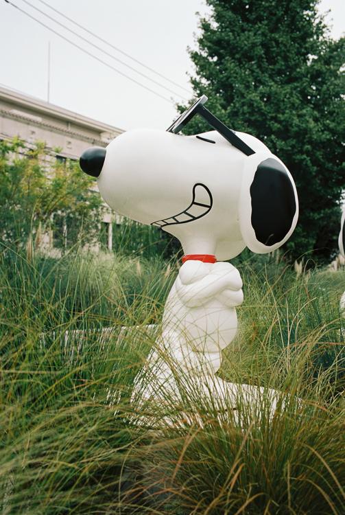 Snoopy, Roppongi