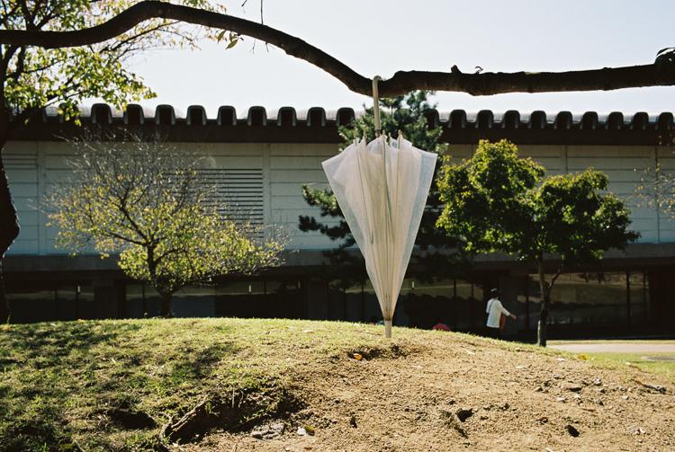 Umbrella, Nara
