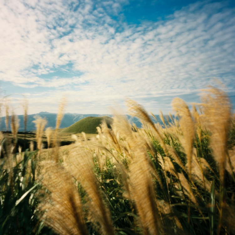 Komezuka – The rice bowl hill (pinhole photograph made with a Zero Image 69MF on Kodak Portra)