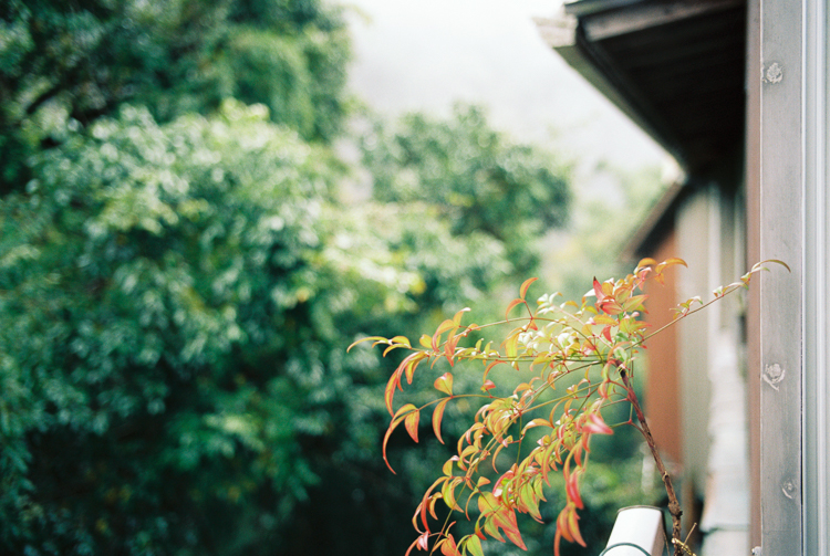 View from a window, near Ama No Iwato Shrine