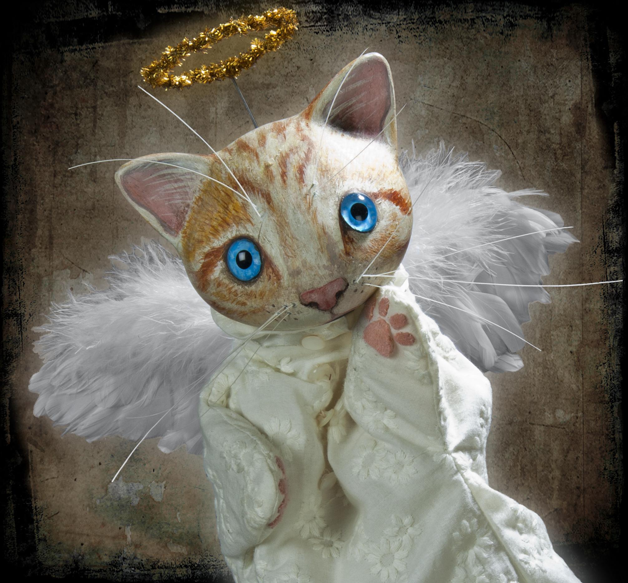 Kitty-xmas copy.jpg