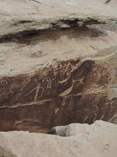 Petroglyph , Ancestral Pueblo Culture, Petrified Forest National Park, AZ