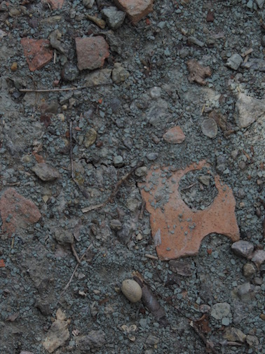 Discarded Bricks embeded in Decorah Shale Clay - found at the ruins of Twin Cities Brick Company, Saint Paul, MN.