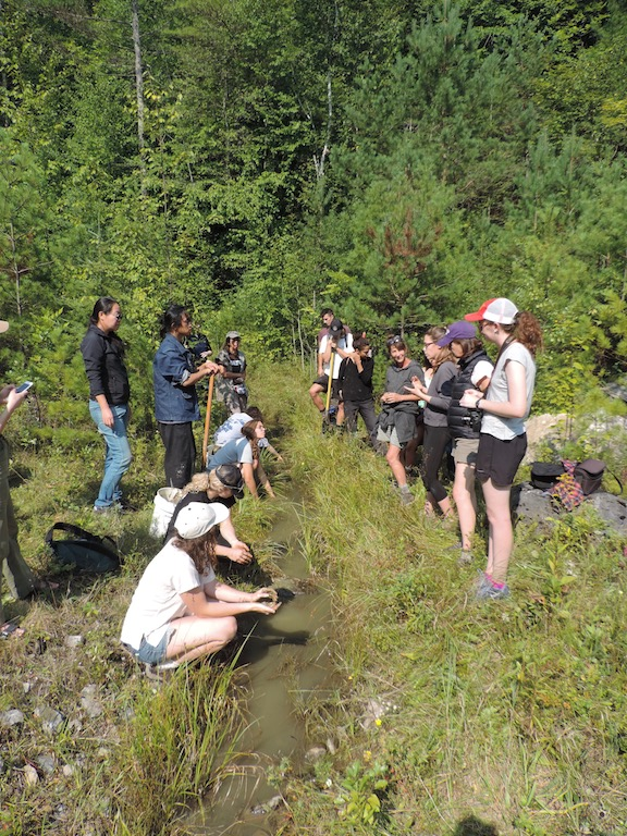 Workshop participants collecting silty clay from a creek in Dorset, VT