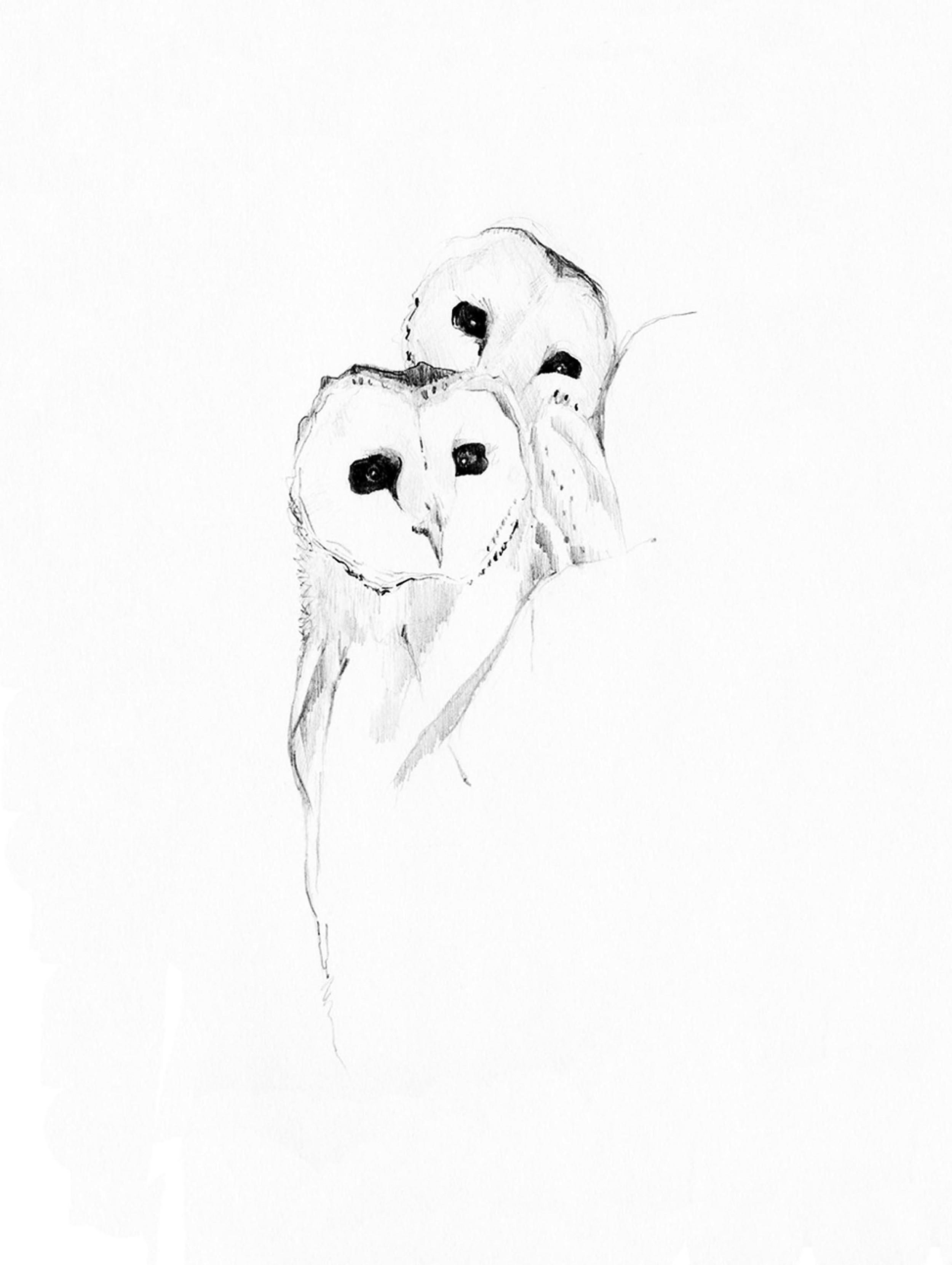 2. owls.jpg