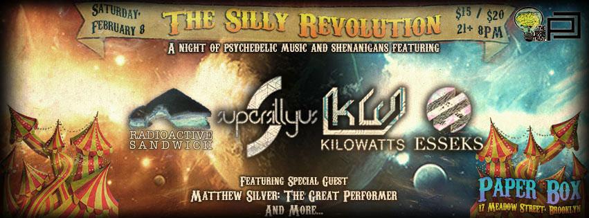 Sillian Design 2.8.14 The Silly Revolution banner.jpg