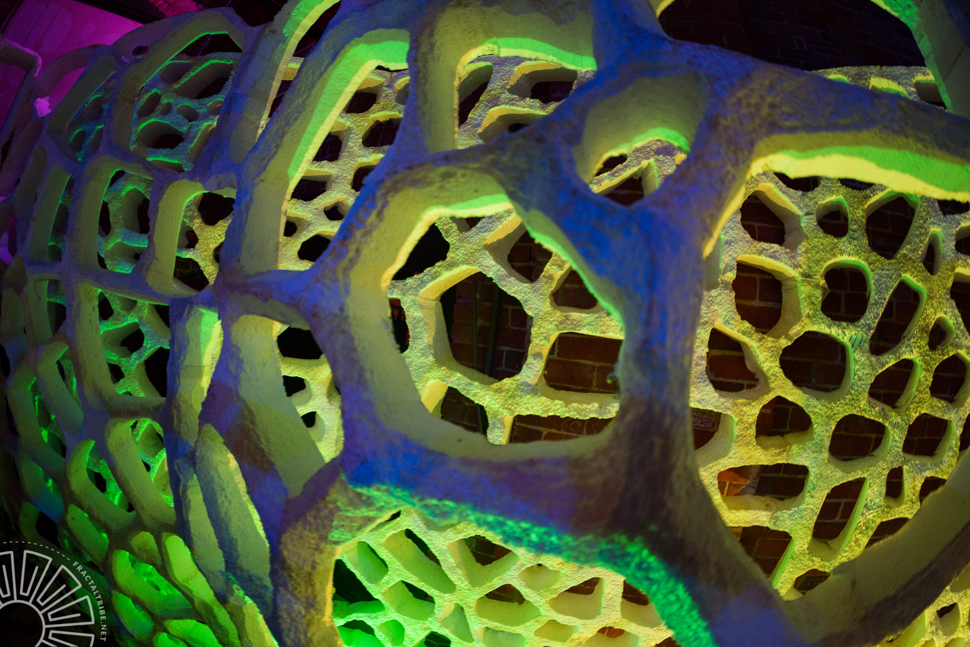 Fungus Web @ Fractaltribe presents Year of the Fractilian 2014