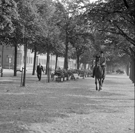Morgonritt Strandvägen hörnet Torstenssonsgatan, 1967, foto Lennart af Petersens Stockholmskällan.