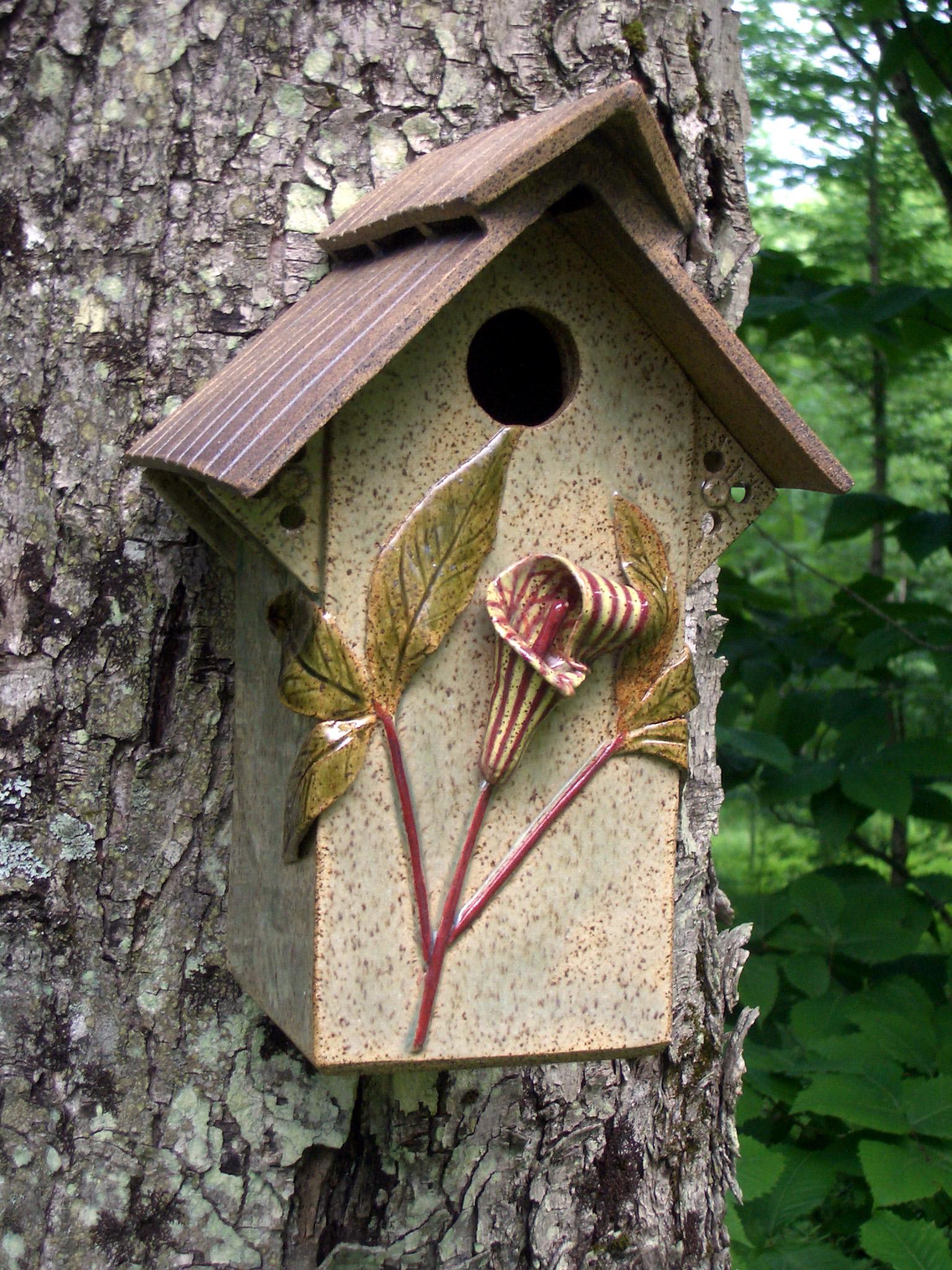 abby's birdhouse1.jpg