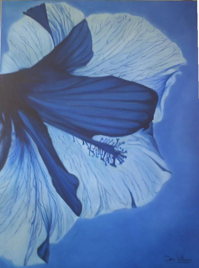blue hibiscus 006.jpg