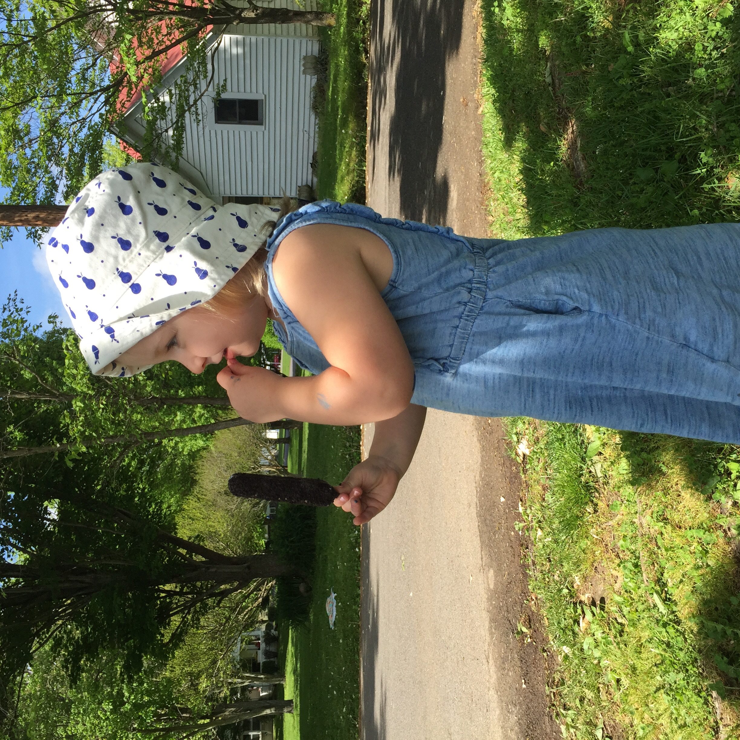 After front porch pictures, she changed into her play clothes and picked them out all by herself! Gap dress & Gap pear sunhat