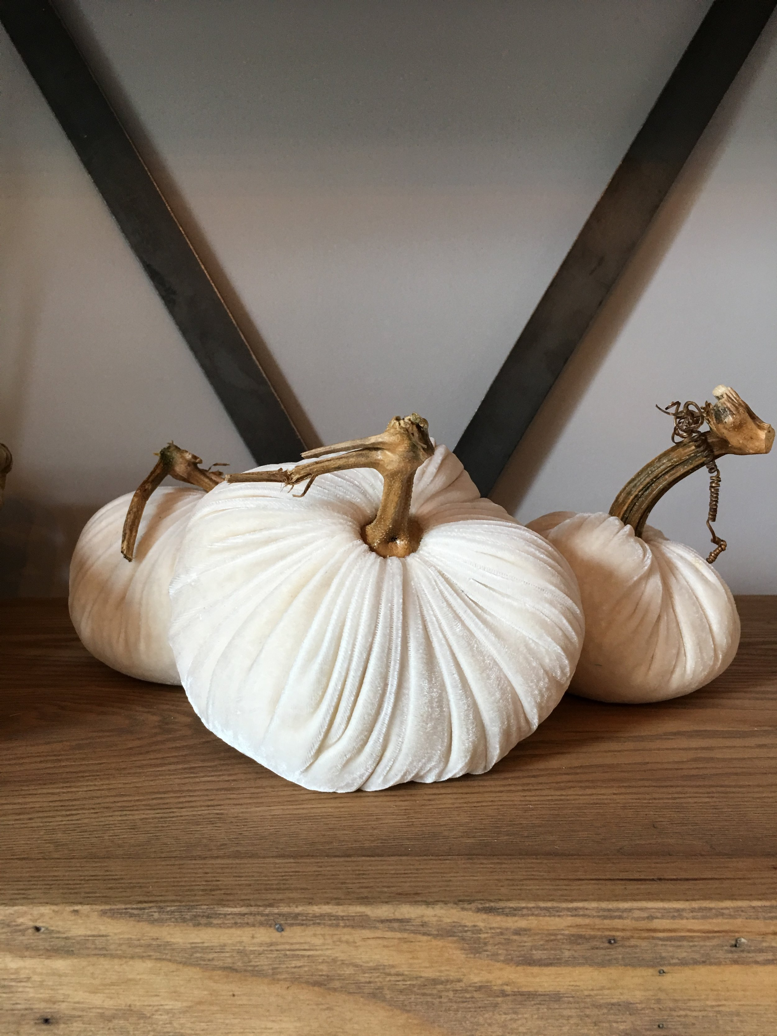 These velvet pumpkins are everything!!