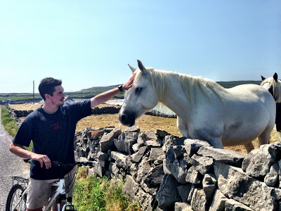 A horse came up to me while I was biking and asked to be petted. I told him that I was sorry that I didn't have an apple.