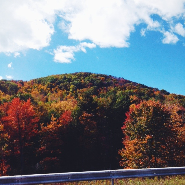 Passing through the Berkshires on our roadtrip 2014   Photo by Author