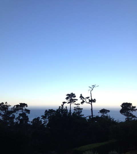 The Pacific Ocean, Carmel, California.jpg