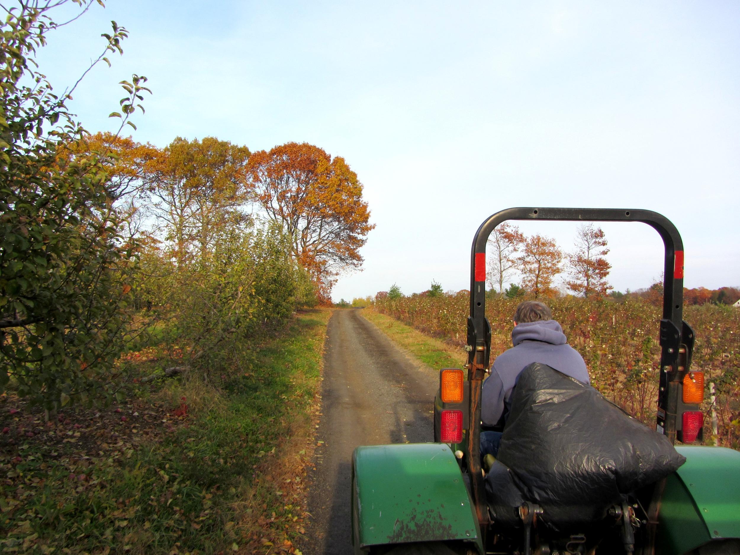 Russell Orchard, Ipswich, Massachusetts | Things to do on Massachusett's North Shore | The Galivant