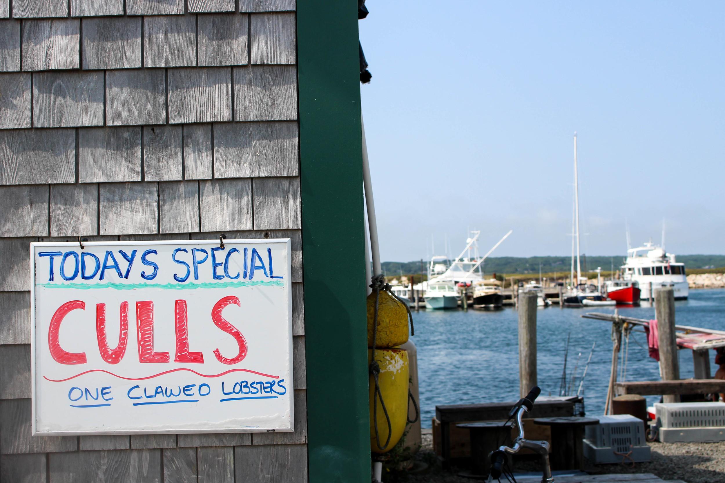Larsen's Fish Market | Martha's Vineyard | The Gallivant