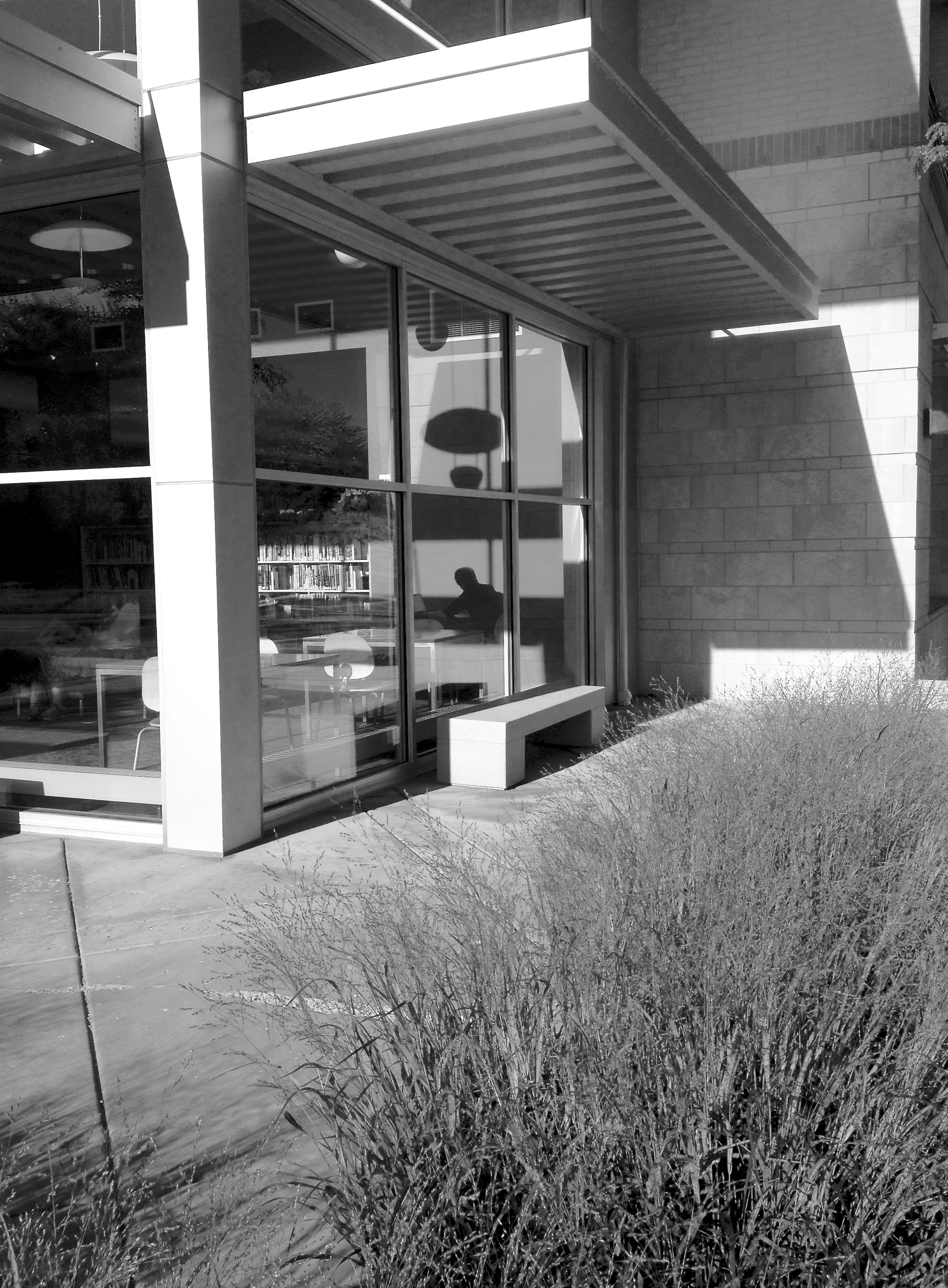 Library Patron (b-w) Sequoya Branch Library. Madison, Wisconsin. July 2016. © William D. Walker