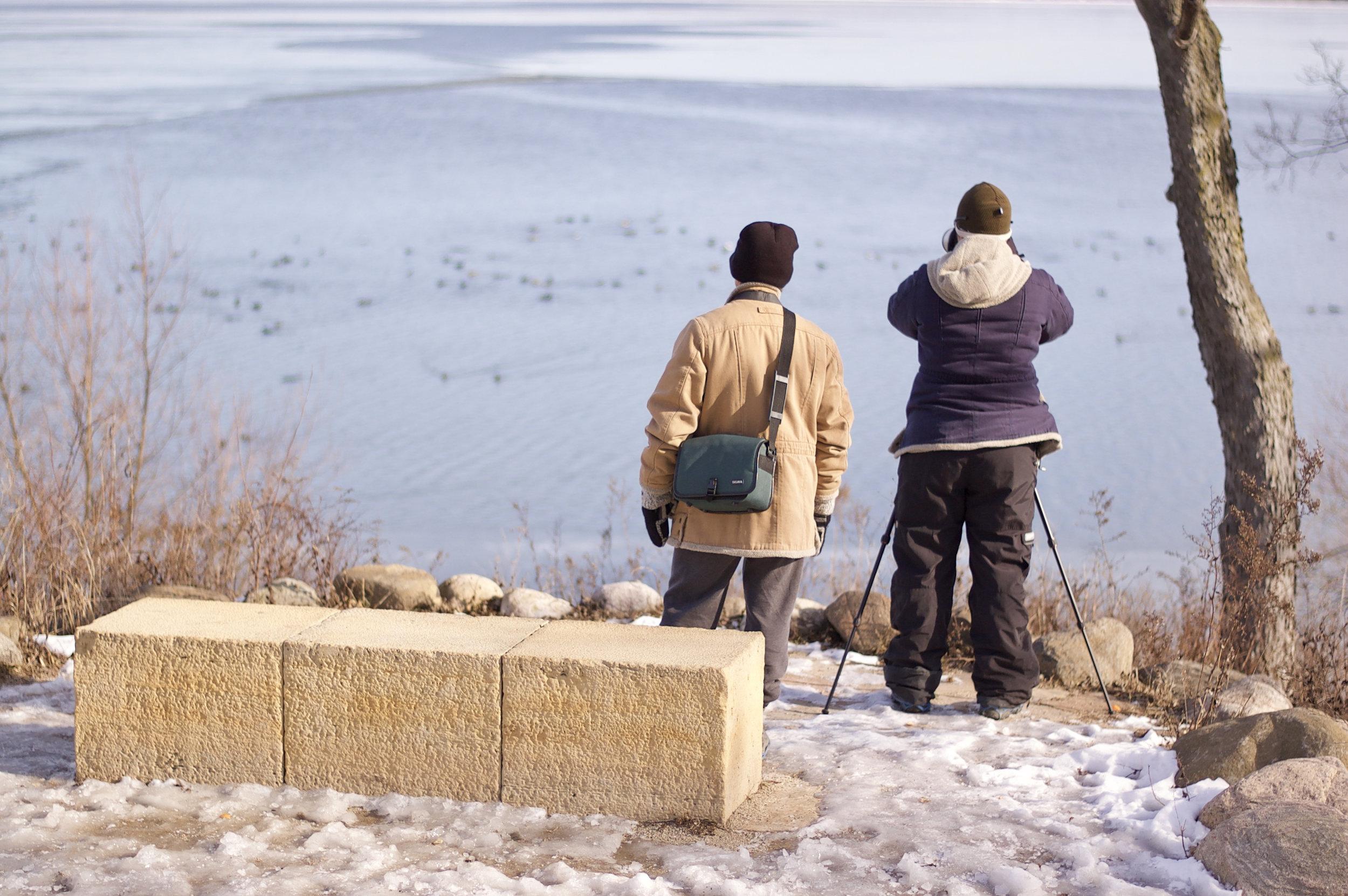 Bird Watchers. Picnic Point. Madison, Wisconsin. January 2017. © William D. Walker