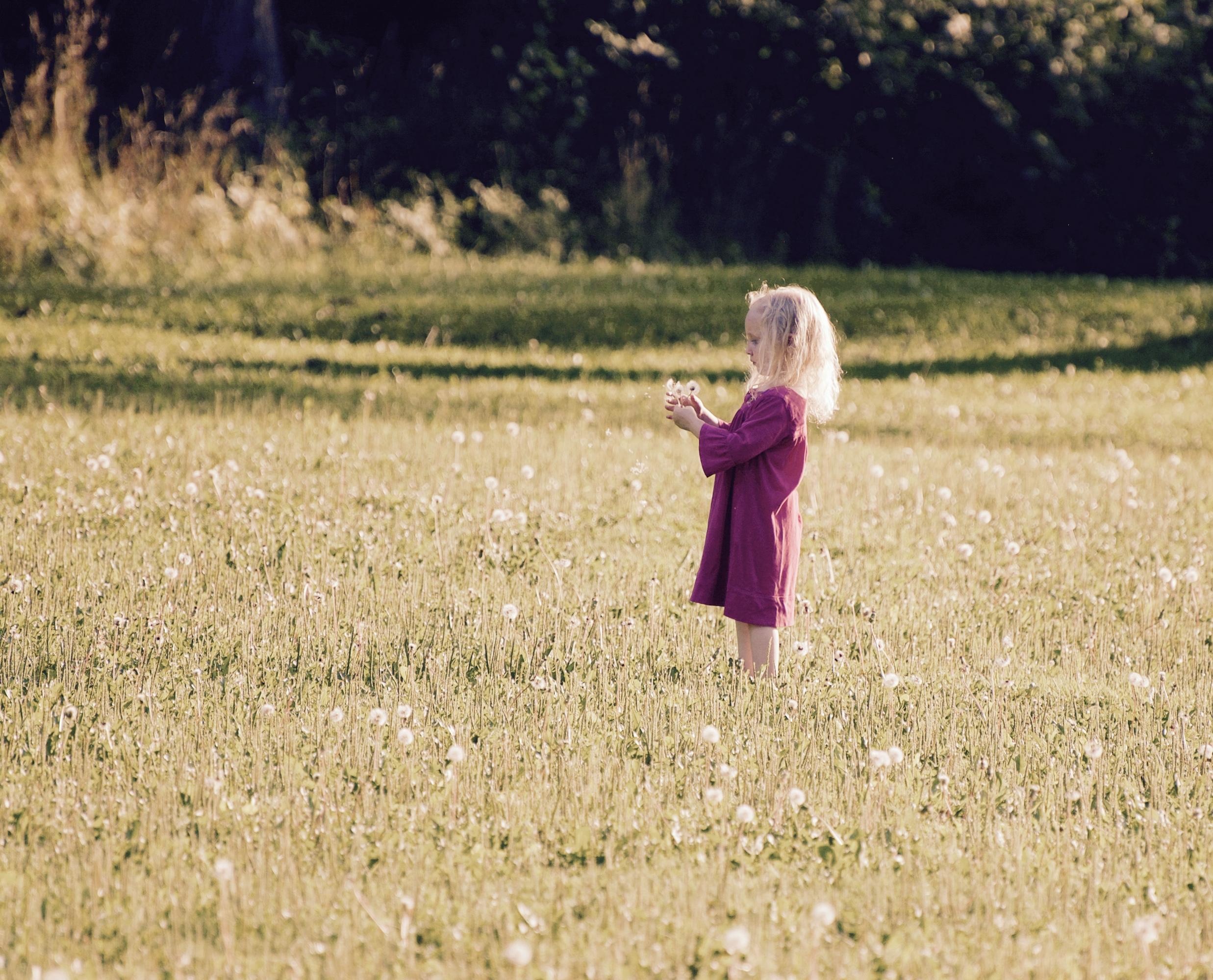 Flower Girl. Westmorland Park. Madison, Wisconsin. August 2016. © William D. Walker