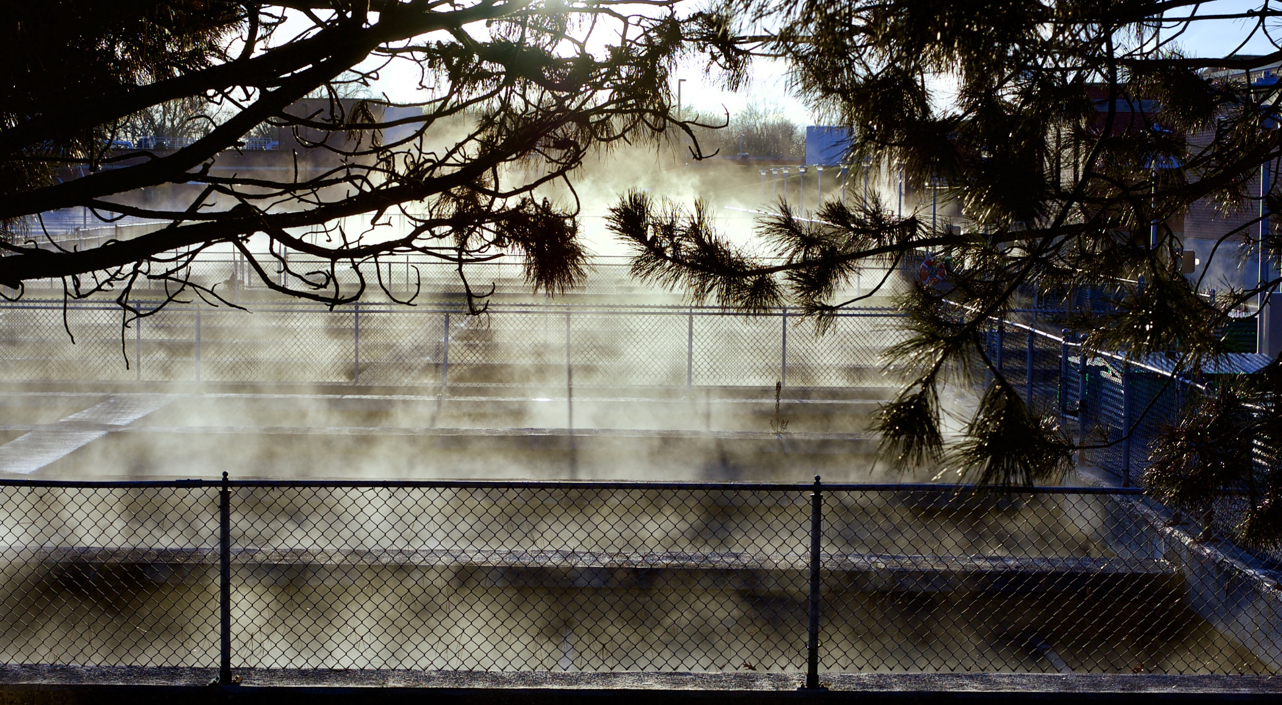 Cold Mist. Madison, Wisconsin. January 2017. © William D. Walker