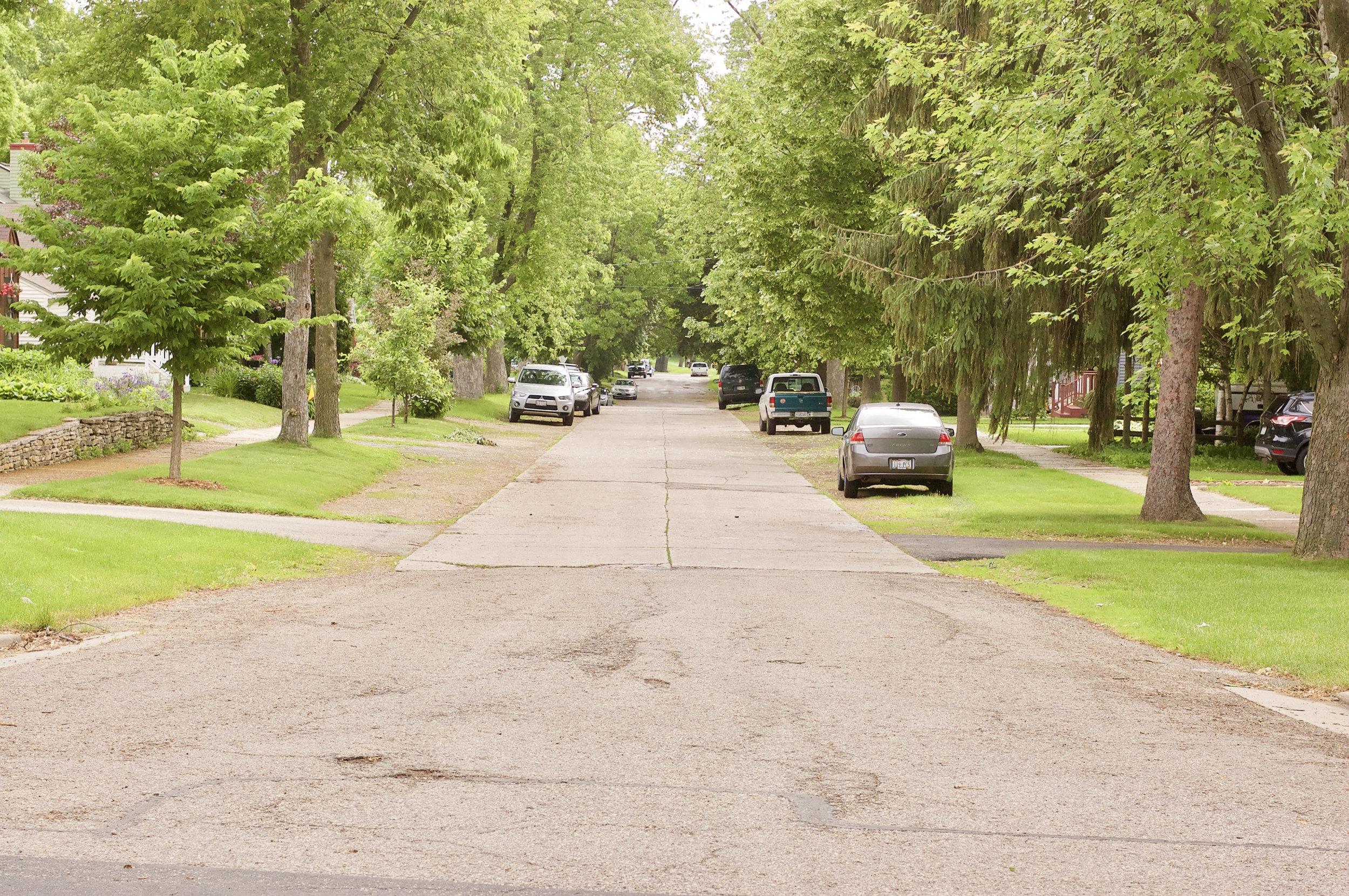 Parkway. Westmorland Neighborhood. Madison, Wisconsin. June 2015. © William D. Walker
