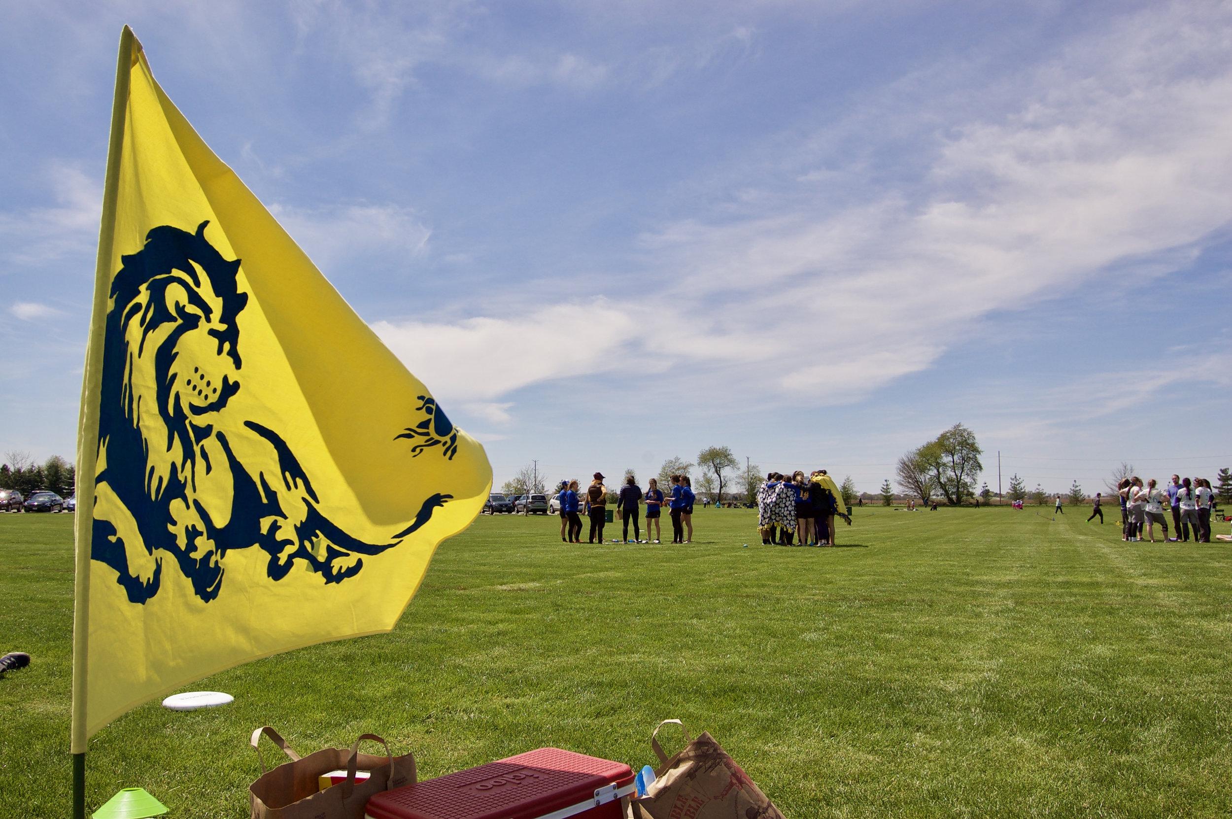Nemea. Stuarts Sports Complex. Montgomery, Illinois. April 2017. © William D. Walker