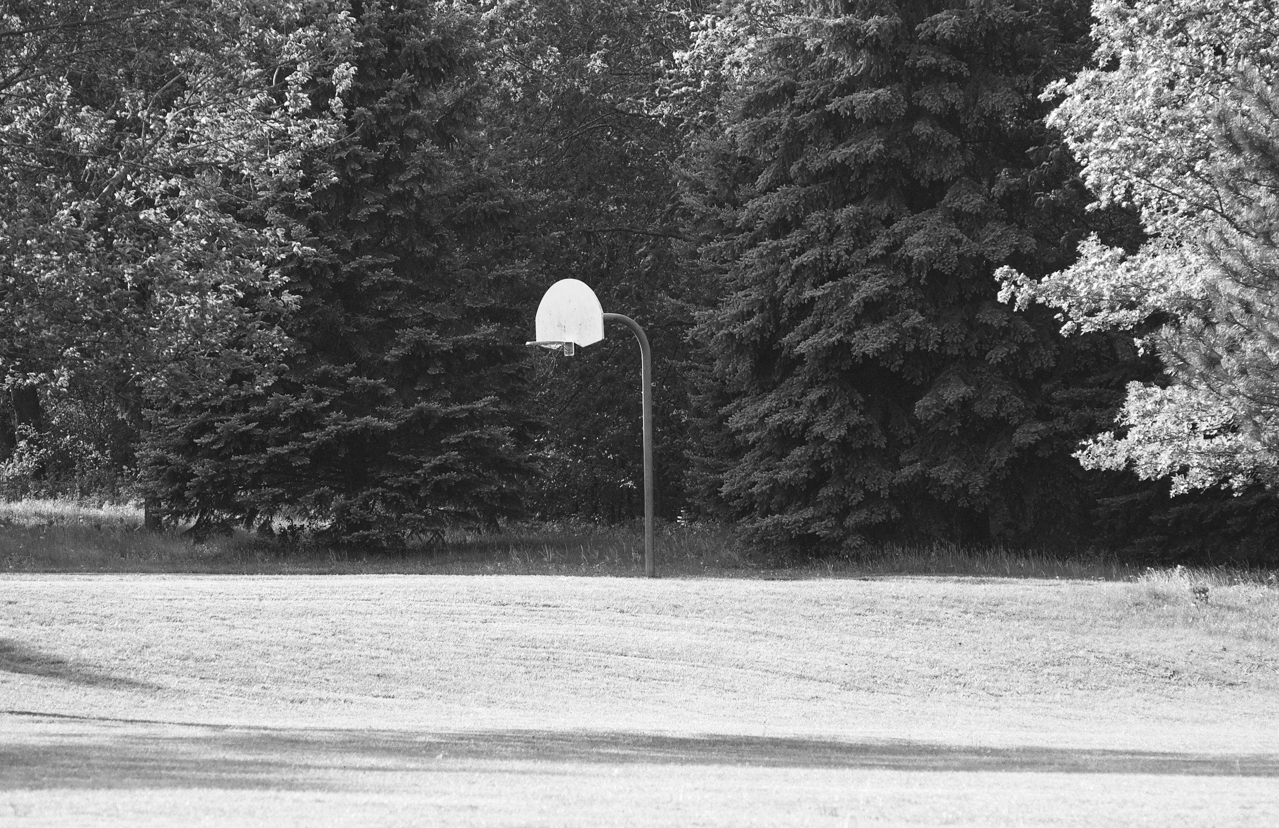 No Net. Woodland Hills Park. Madison, Wisconsin. May 2017. © William D. Walker