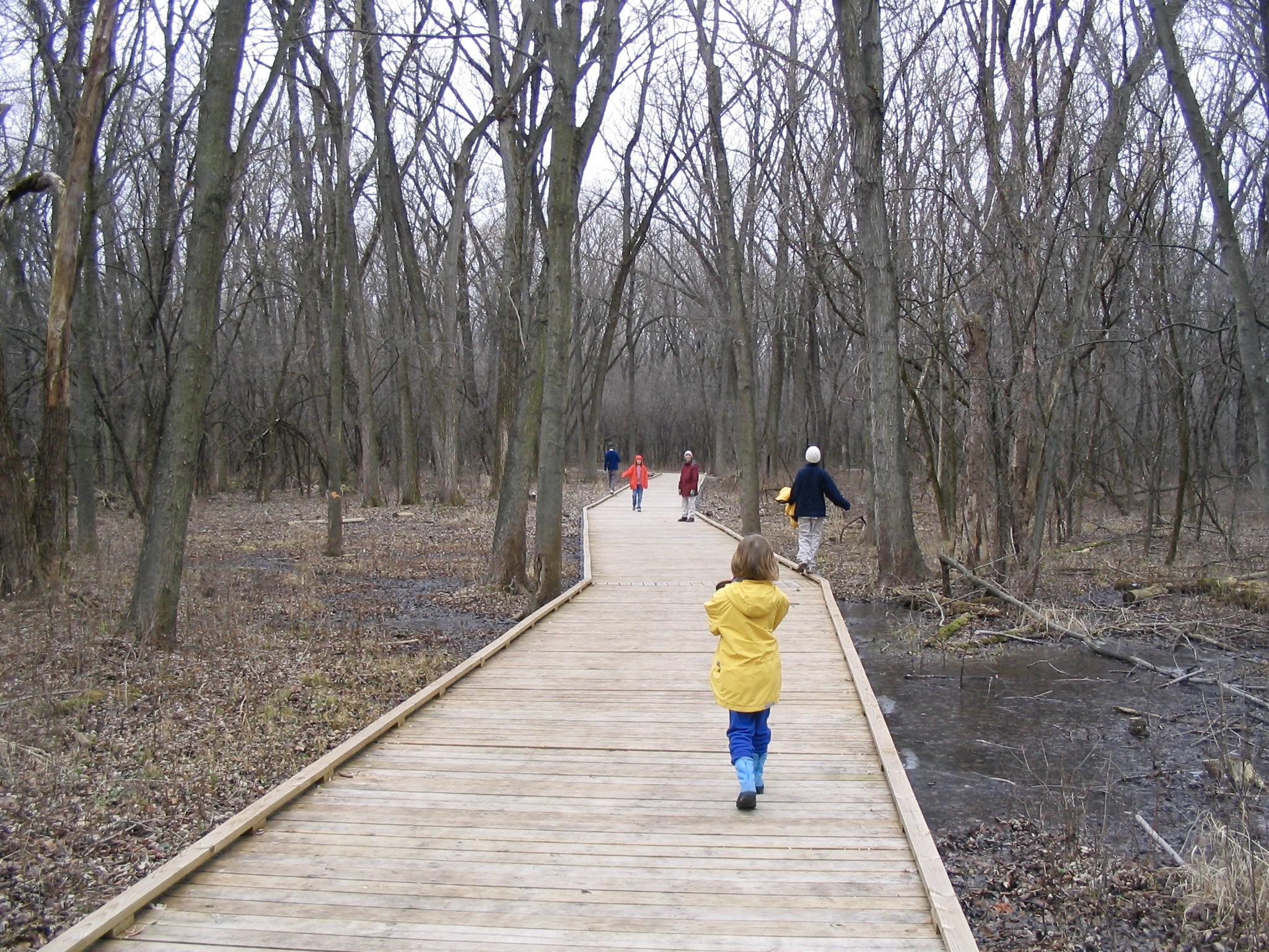 Boardwalk. Pheasant Branch. Madison, Wisconsin. December 2006. © William D. Walker