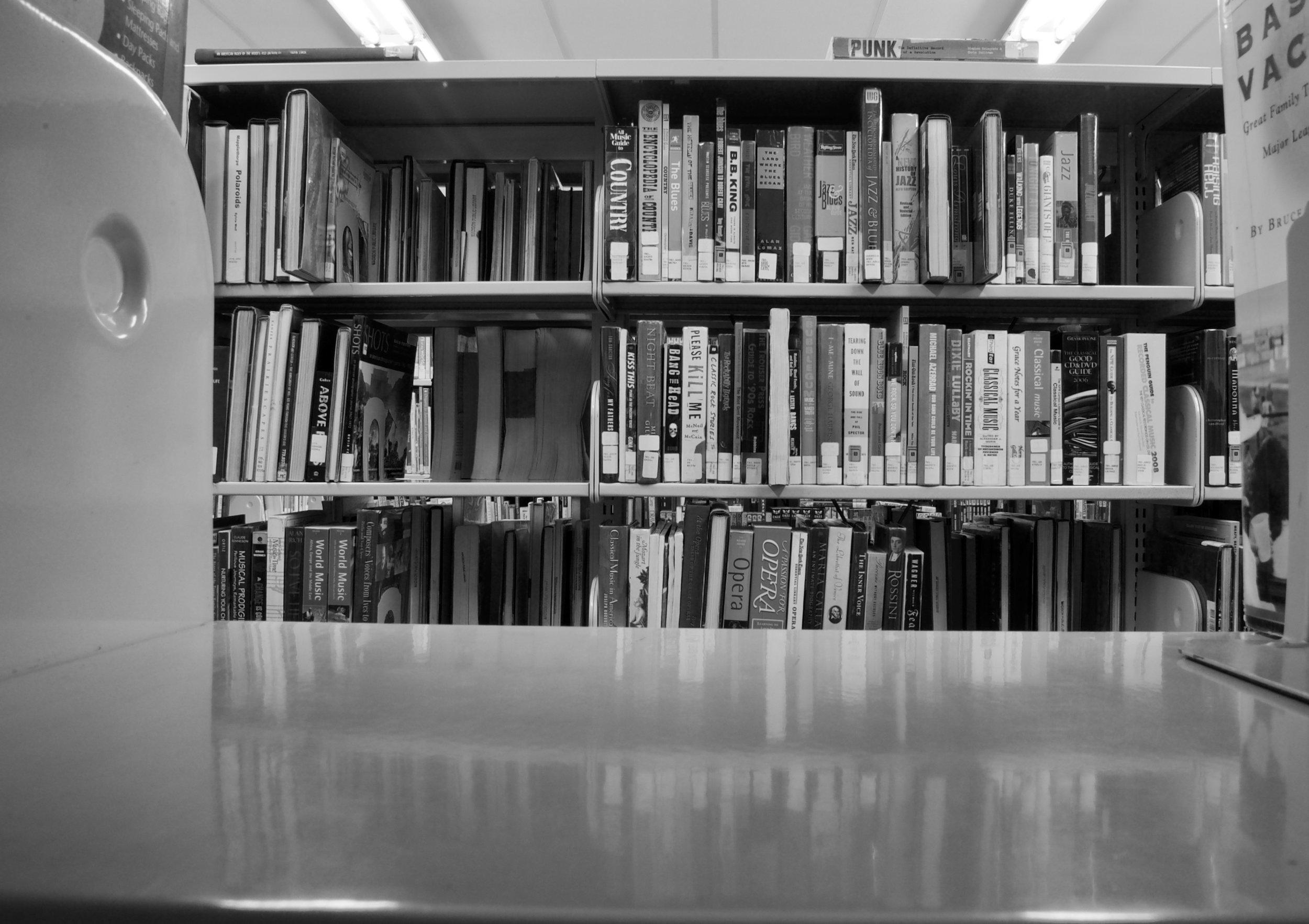 Punk. Former Sequoya Library. Madison, Wisconsin. October 2008. © William D. Walker