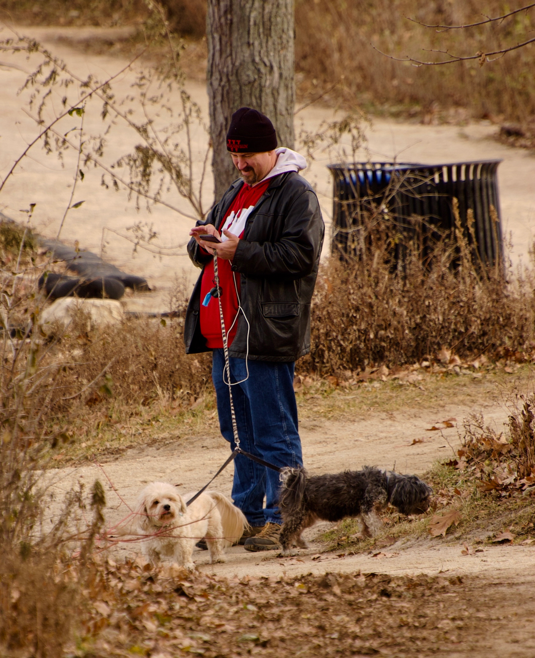 Attentive. Picnic Point. Madison, Wisconsin. December 2017. © William D. Walker