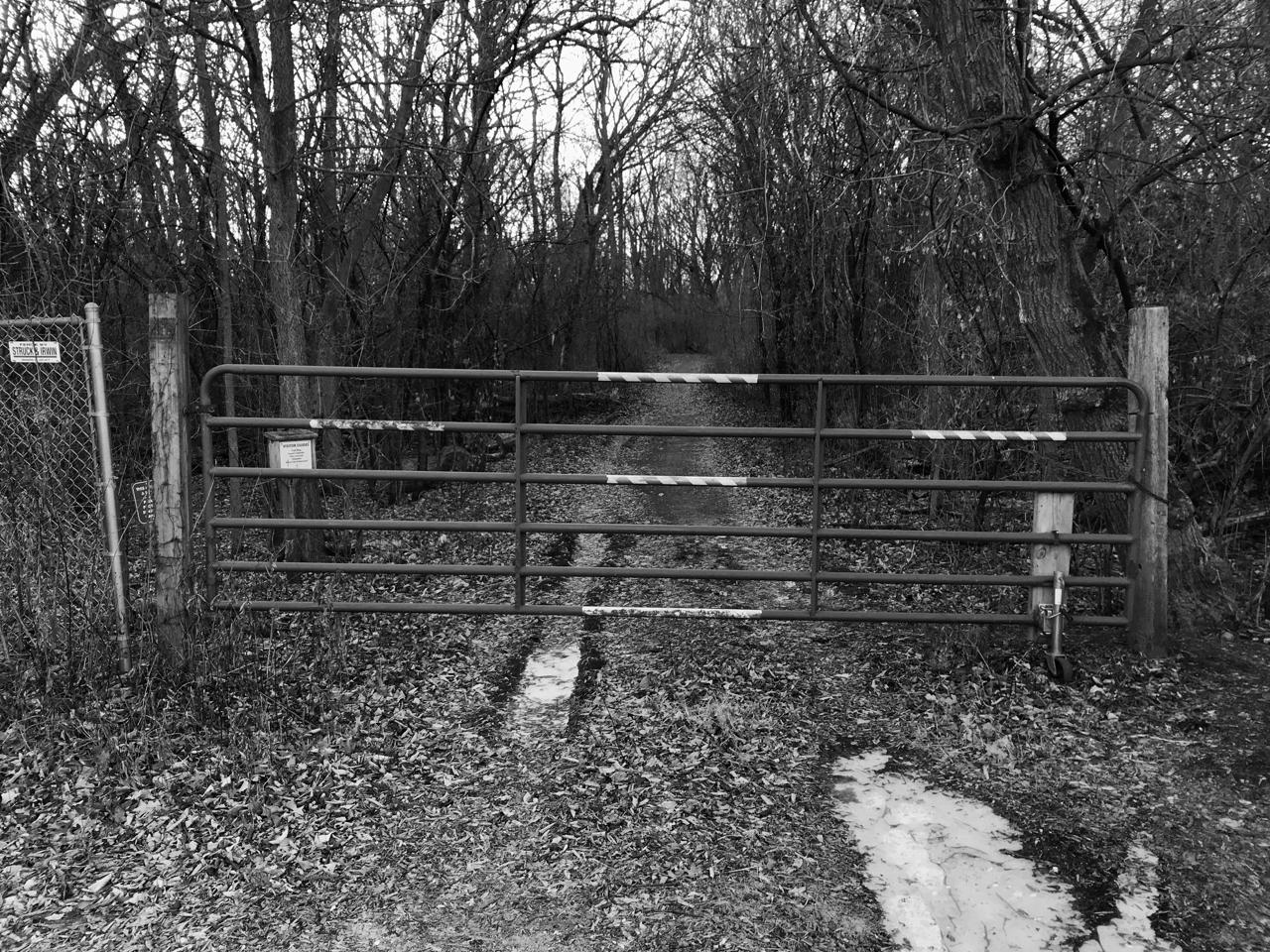 Before the Gate. UW Arboretum. Madison, Wisconsin. January 2018 © William D. Walker