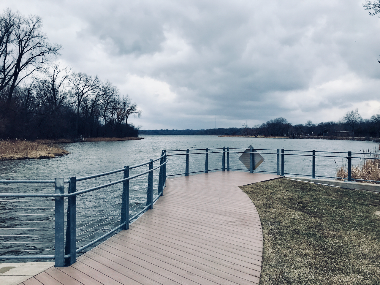 Gray Rails. Lake Wingra. Madison, Wisconsin. March 2018. © William D. Walker