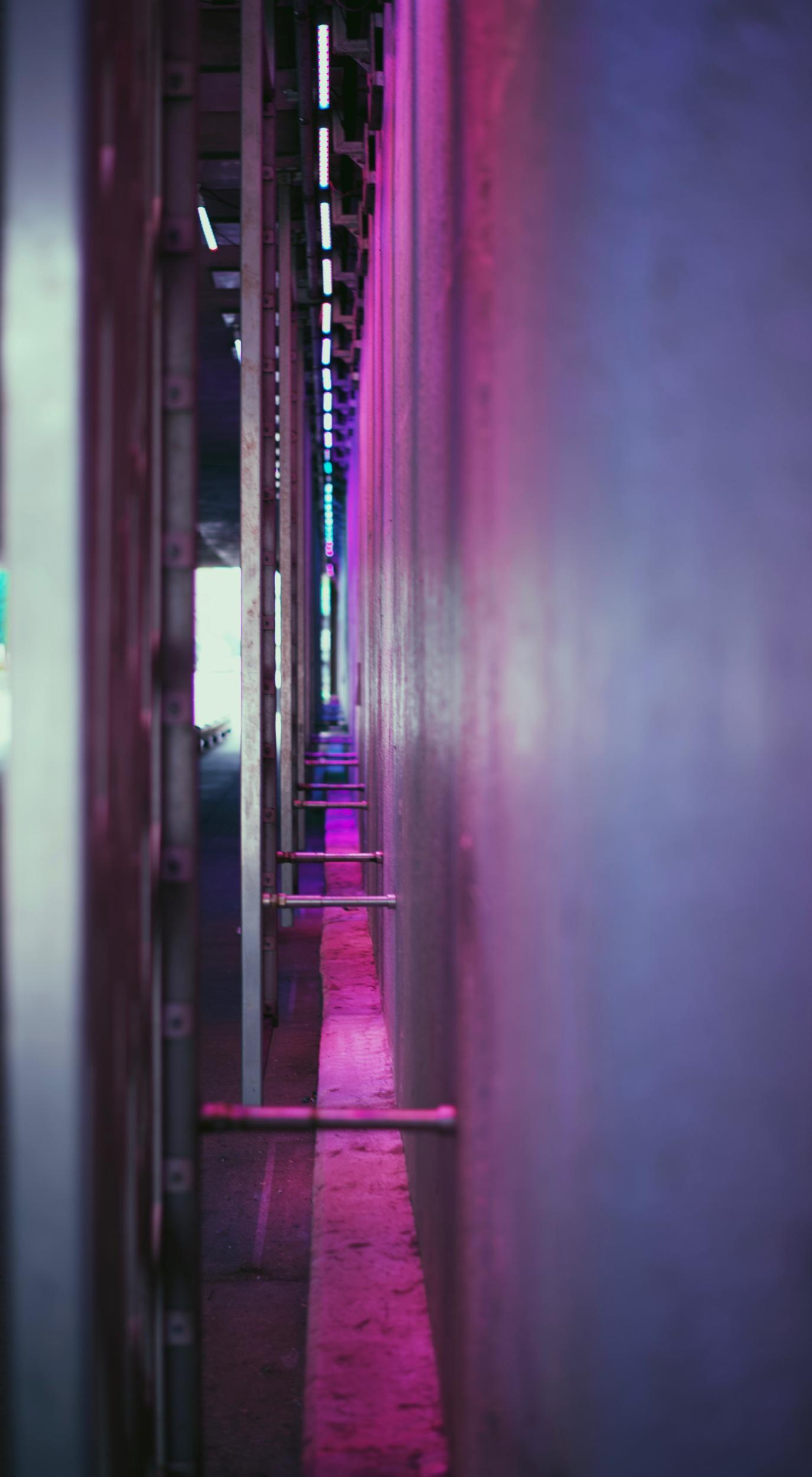 Neo Neon. Chicago, Illinois. May 2019.