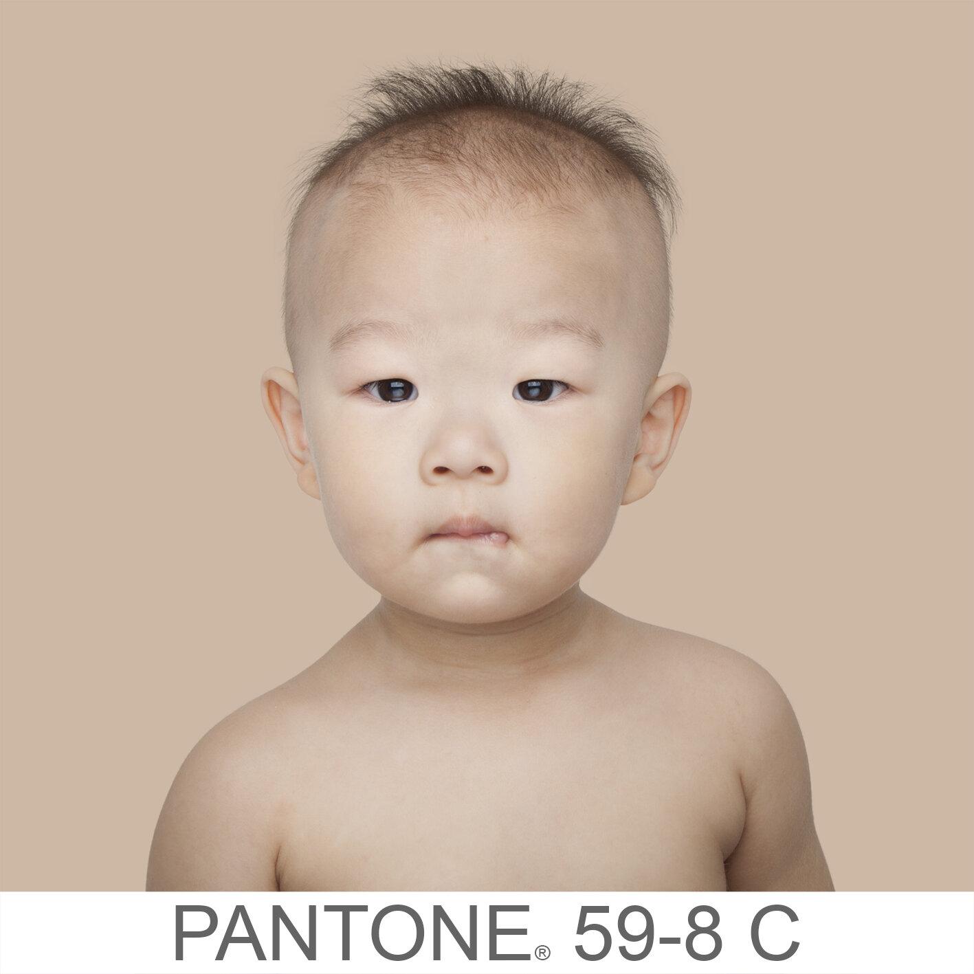 humanae 59-8 C c copia.jpg