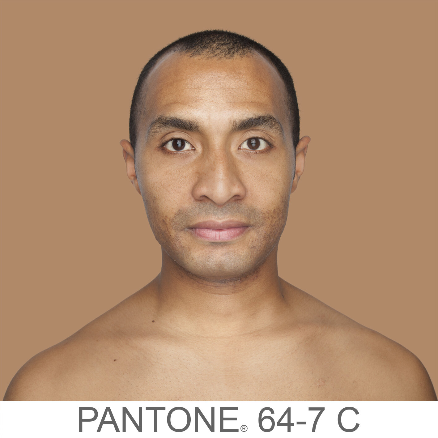 humanae 64-7 C VB copia.jpg