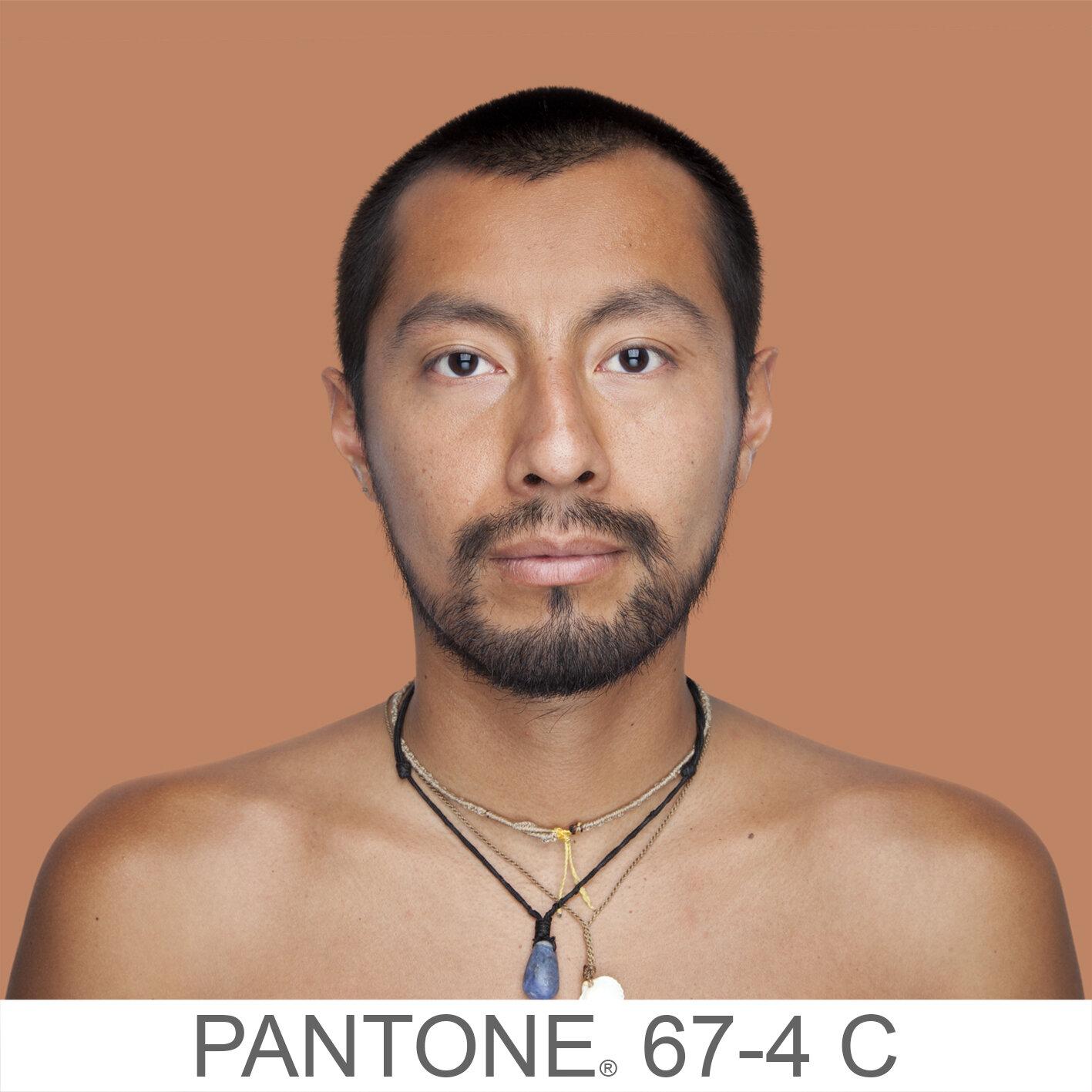 humanae 67-4 C (2) copia.jpg