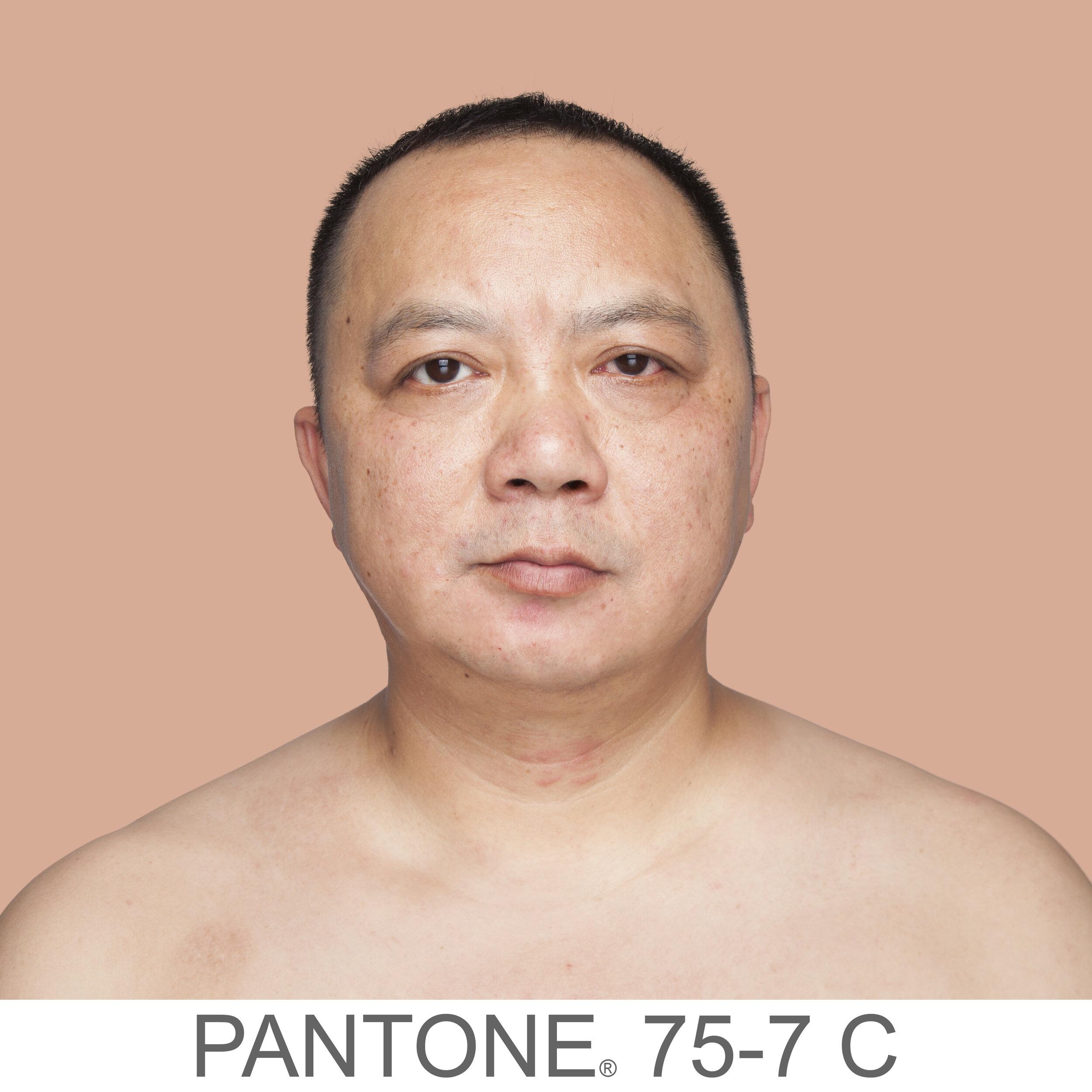 humanae 75-7 C CN copia.jpg