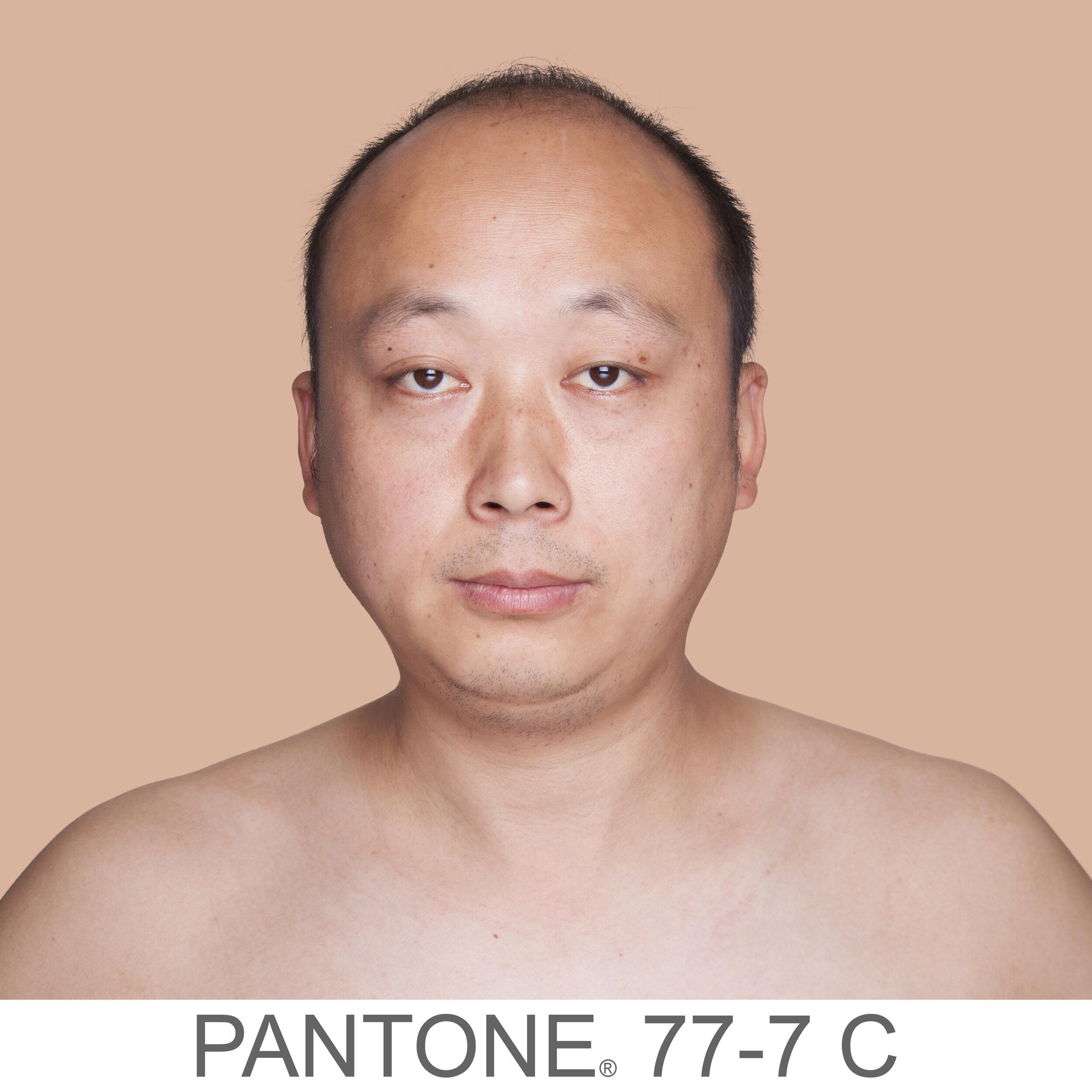 humanae 77-7 C CN copia.jpg