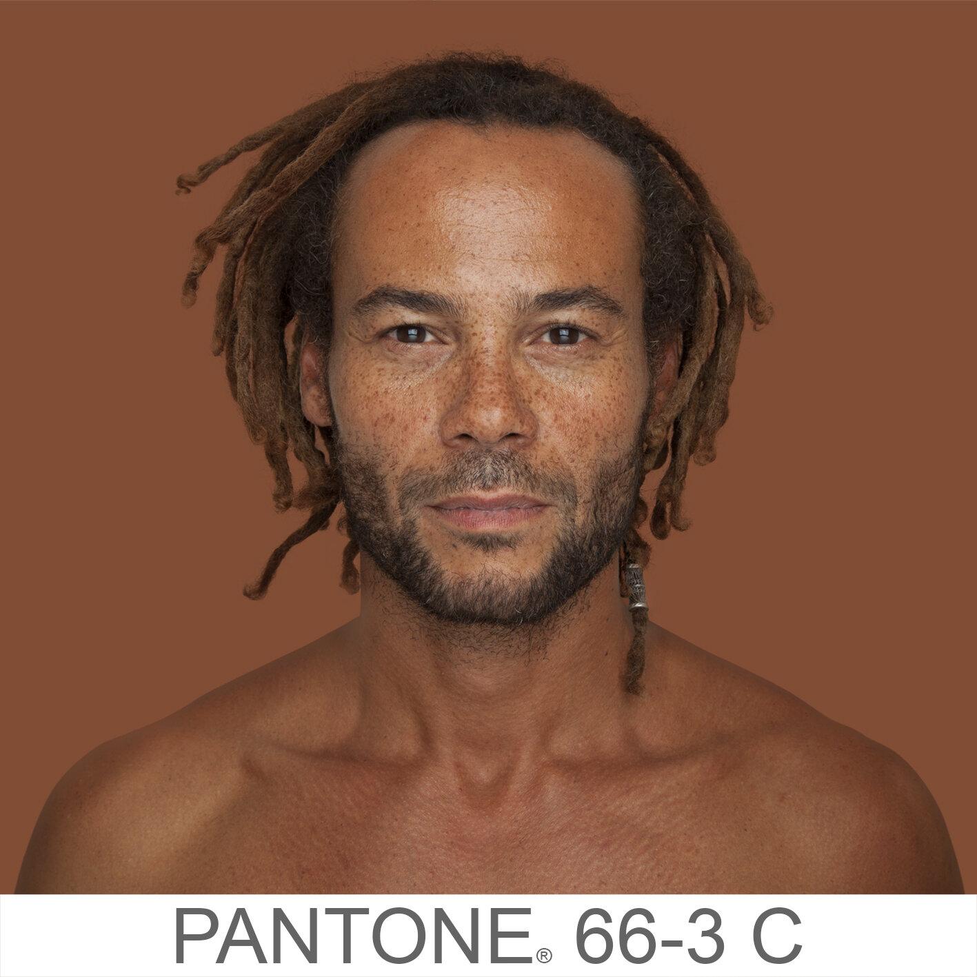 humanae 66-3 C e copia.jpg