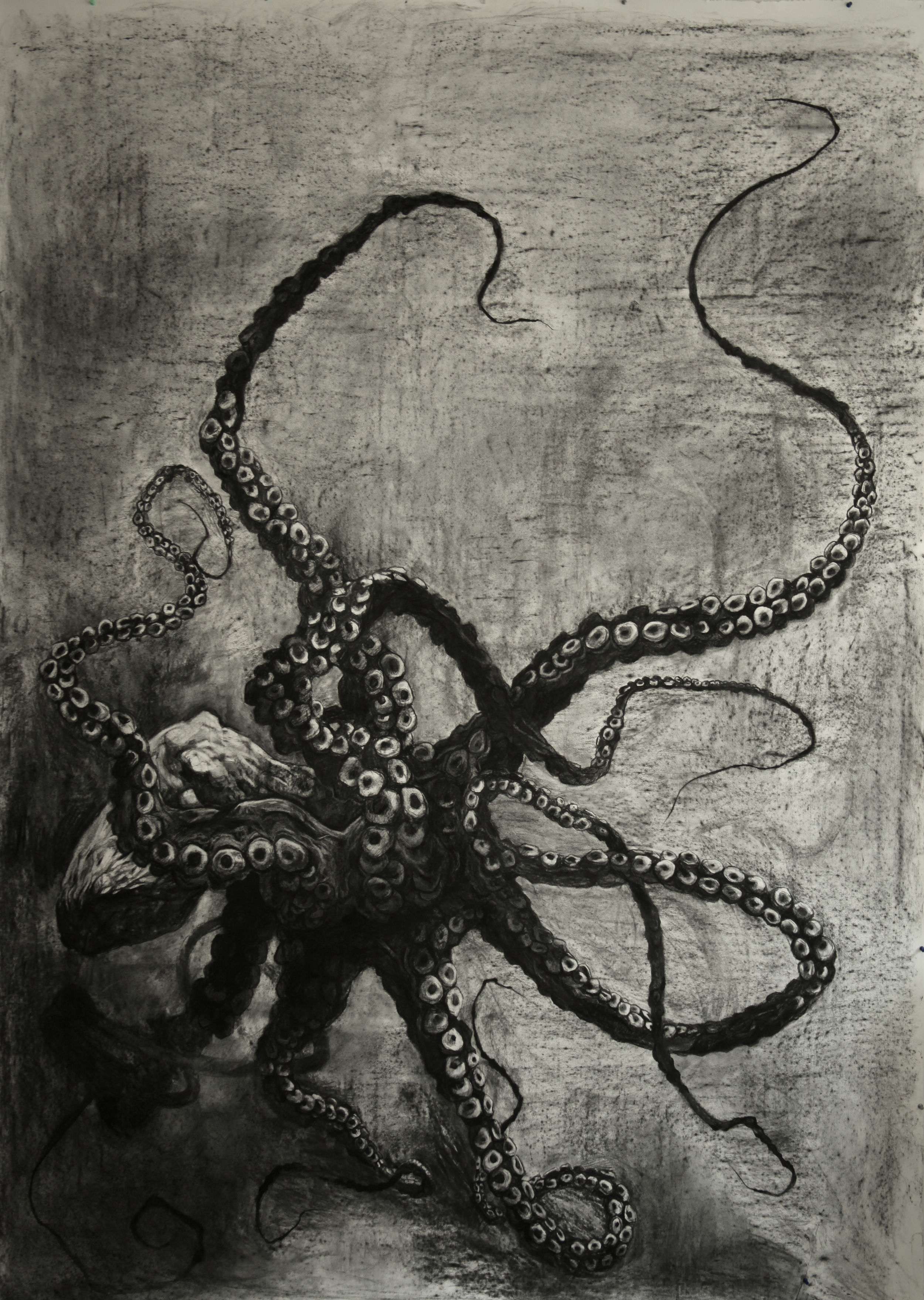 """For Pascal Dangin, for BOX STUDIOS personal collection, Charcoal on Paper, 72""""x96"""", 2014"""