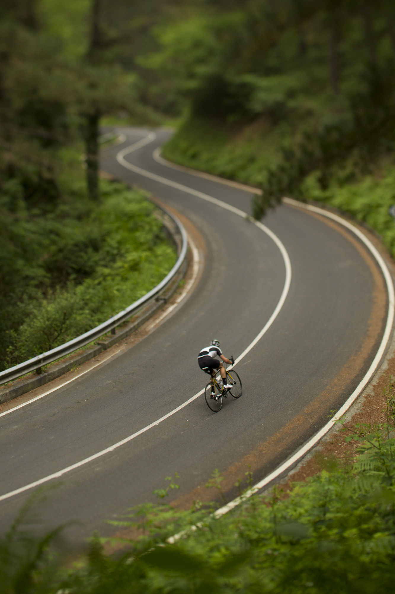 SLorence_roadphoto_043.JPG