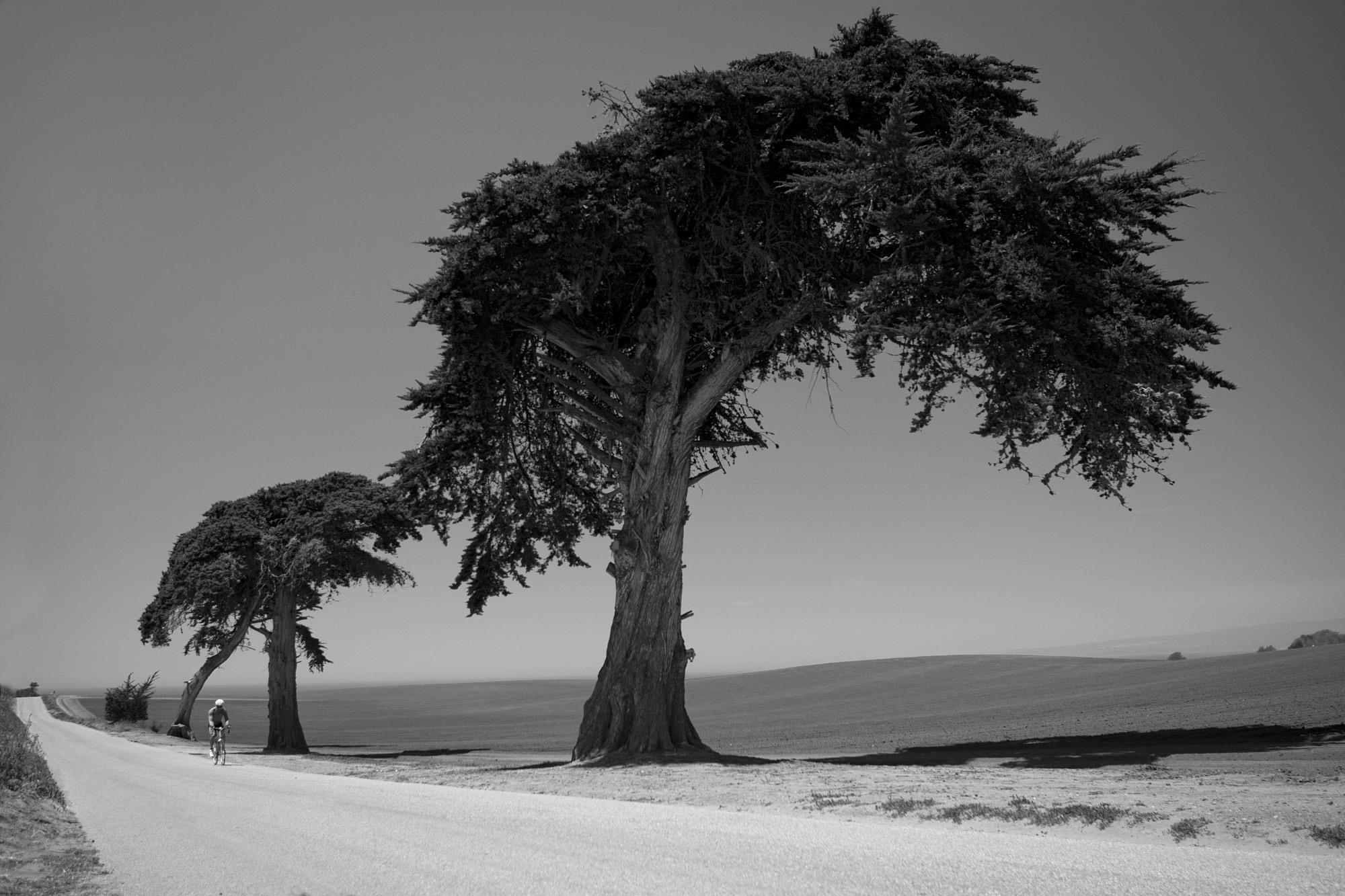 SLorence_roadphoto_047.JPG