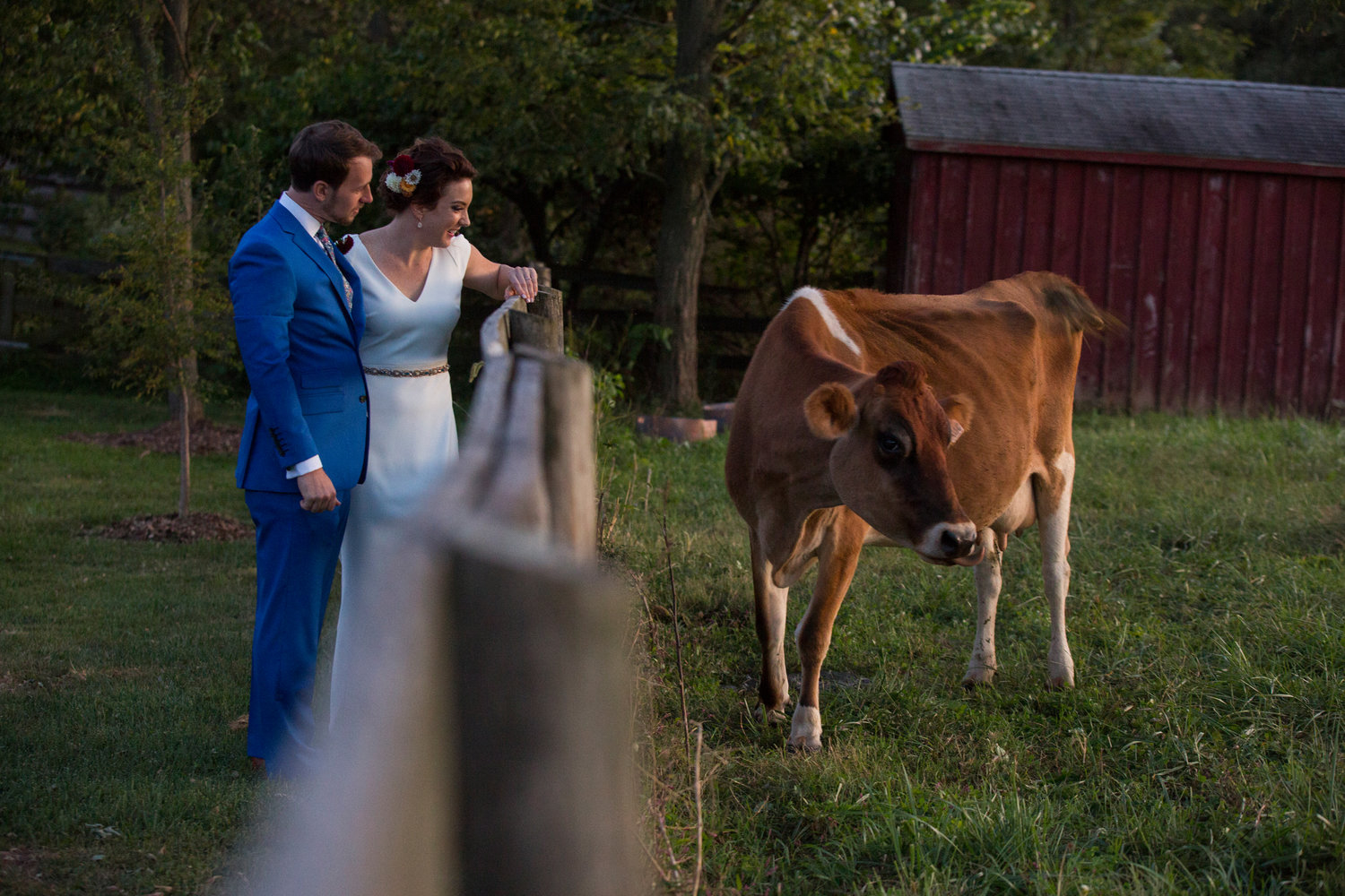 Jennifer and Matt Rocklands Farm Maryland Wedding Molly M Peterson Photography_53.JPG