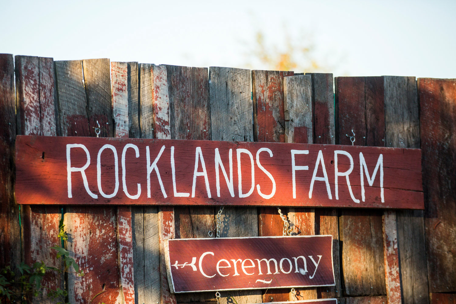 Jennifer and Matt Rocklands Farm Maryland Wedding Molly M Peterson Photography.JPG