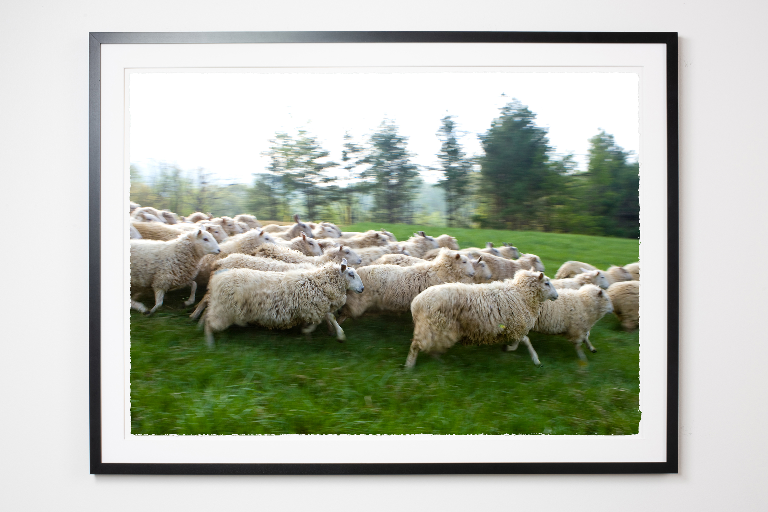 583Molly M Peterson Framed Print Heartwork HudsonValley.jpg